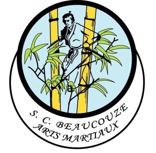 logo_club_tr_gif_xflxd2g_partial - copie